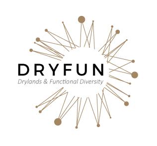 Dryfun